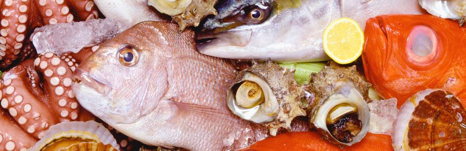 築地より直送!おいしい魚を皆様の食卓へ